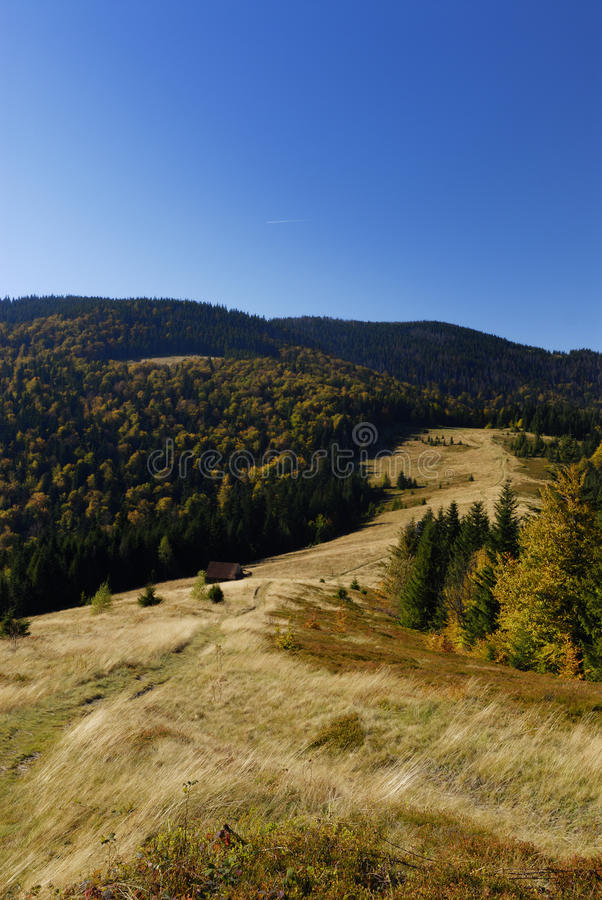 Autunno nelle montagne fotografia stock libera da diritti