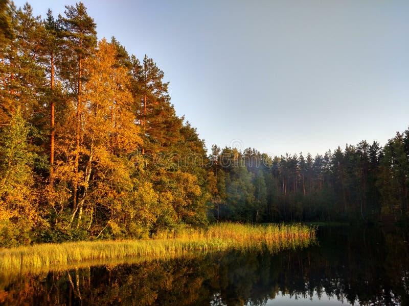 Autunno nordico fotografia stock libera da diritti