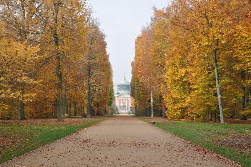 Autunno a Potsdam fotografia stock