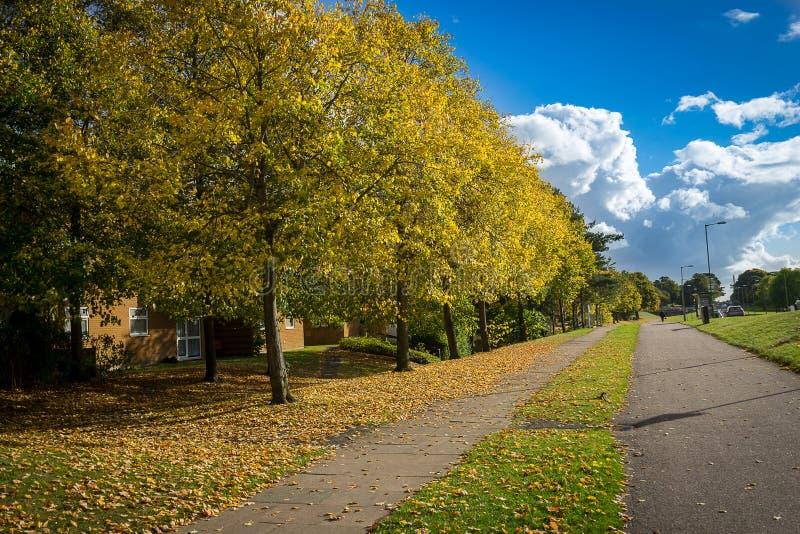 Autunno, strada nella città al giorno soleggiato Zona della passeggiata fotografia stock
