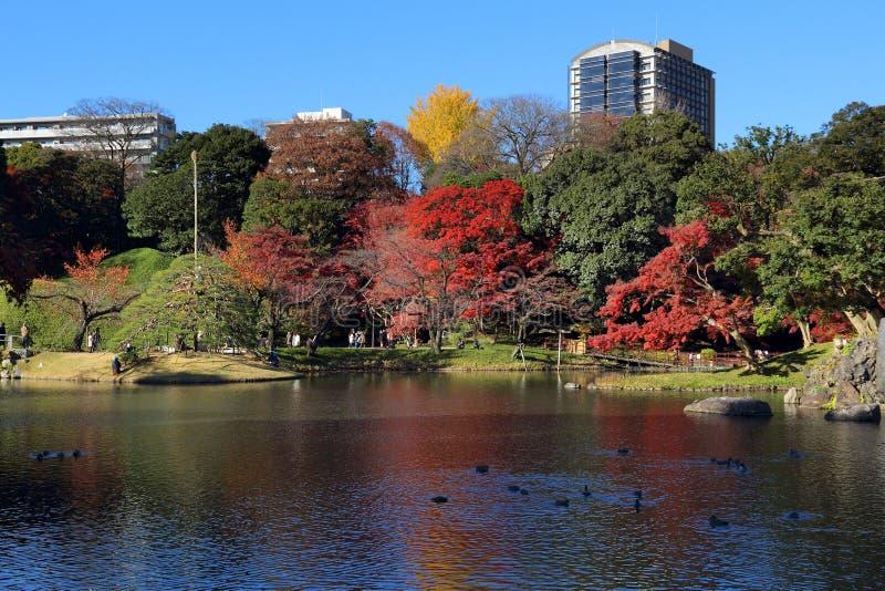 Autunno a Tokyo fotografia stock libera da diritti