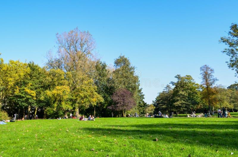 Autunno in un parco a Amsterdam immagine stock libera da diritti