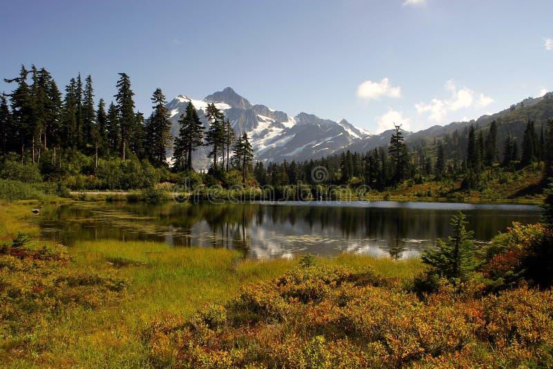 Autunno vicino al Mt Shuksan immagini stock libere da diritti