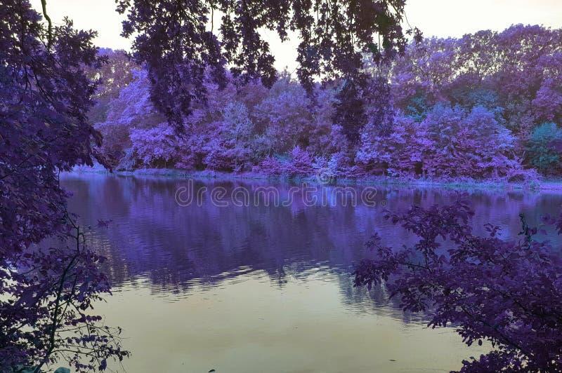 Autuun的一个湖 库存照片