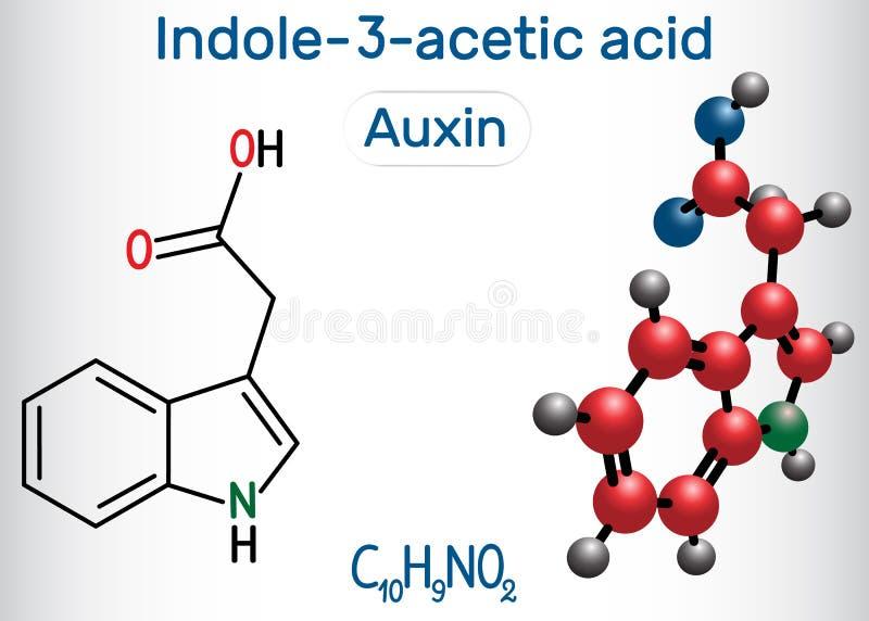 Auxin Indole-3-acetic syrlig IAA, 3-IAA Strukturell kemisk formel- och molekylmodell royaltyfri illustrationer