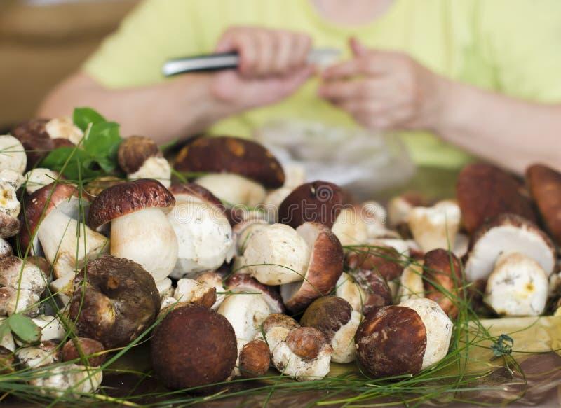 A avó corta cogumelos do porcini em uma grande placa amarela imagens de stock royalty free