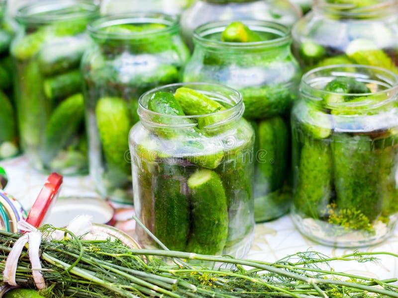 A avó fecha pepinos conservados nos bancos para o inverno, o processo de conservar pepinos frescos pequenos no frasco imagem de stock
