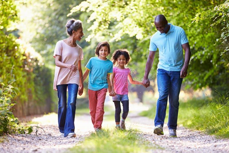 Avós com os netos que andam através do campo fotos de stock royalty free