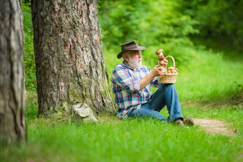 Avô feliz - verão e passatempos Passeio do homem idoso Pensionista do vov? Caminhada superior na mola e nos passatempos da flores imagem de stock