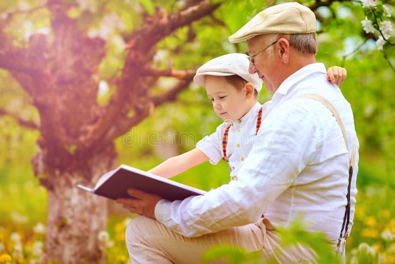 Avô com o livro de leitura do neto no jardim da mola imagens de stock