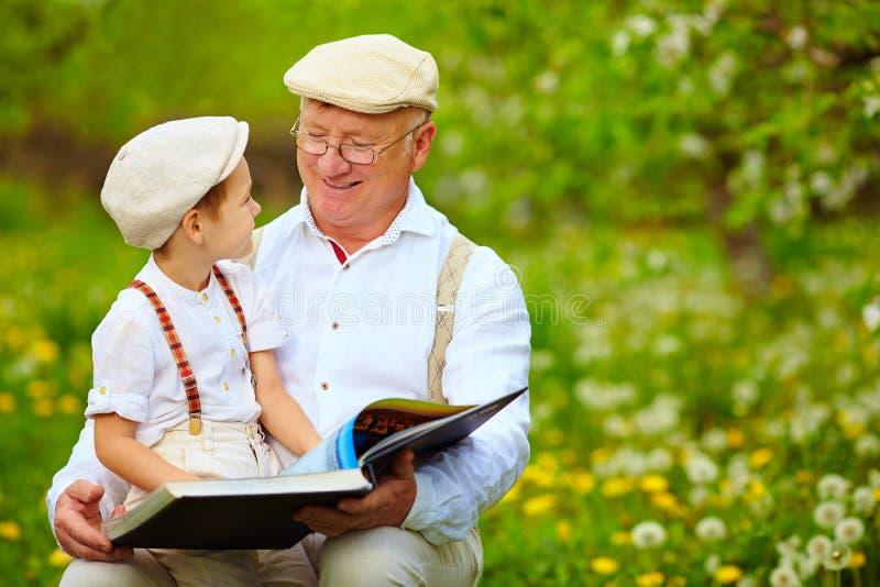 Avô com o livro de leitura do neto no jardim da mola fotografia de stock royalty free