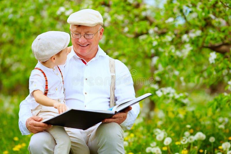 Avô com o livro de leitura do neto no jardim da mola fotos de stock