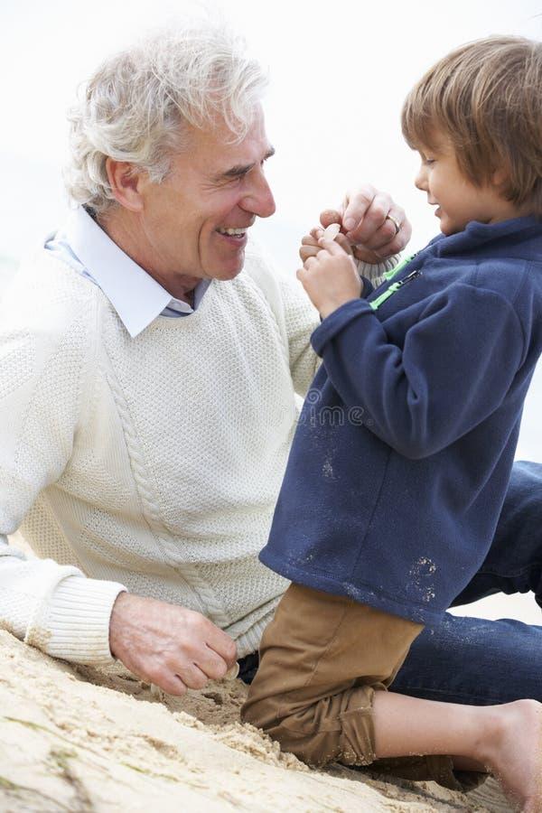 Avô e neto que olham Shell On Beach Together imagem de stock royalty free