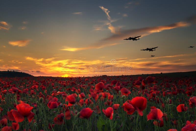 Av fruktan att vi glömmer, Lancaster bombplaner som flyger över vallmofält royaltyfria bilder