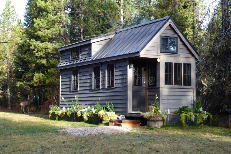 Av mycket litet hus för raster i bergen royaltyfri bild