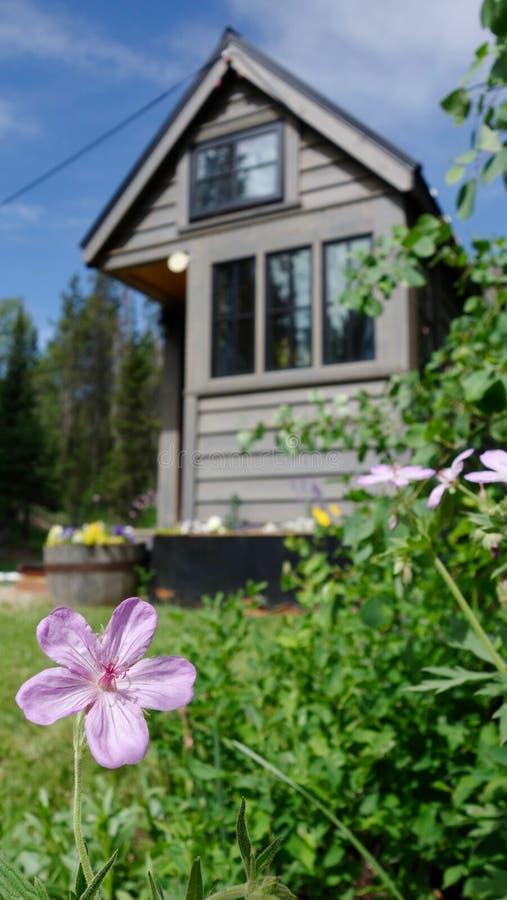 Av mycket litet hus för raster i bergen fotografering för bildbyråer