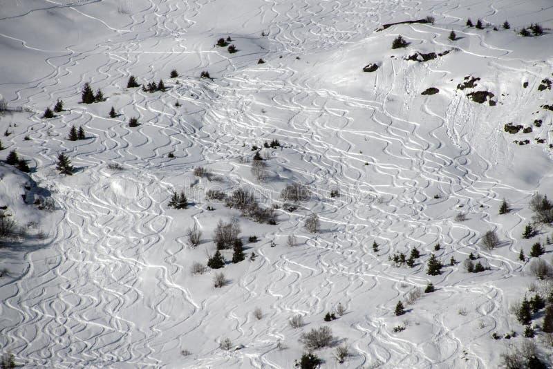 Av-piste skidåkningspår royaltyfri foto