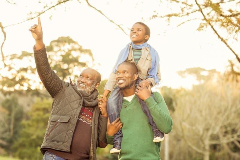 Avô que aponta algo a seus filho e neto fotos de stock royalty free