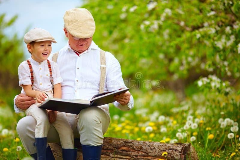 Avô que lê um livro a seu neto, no jardim de florescência imagens de stock royalty free