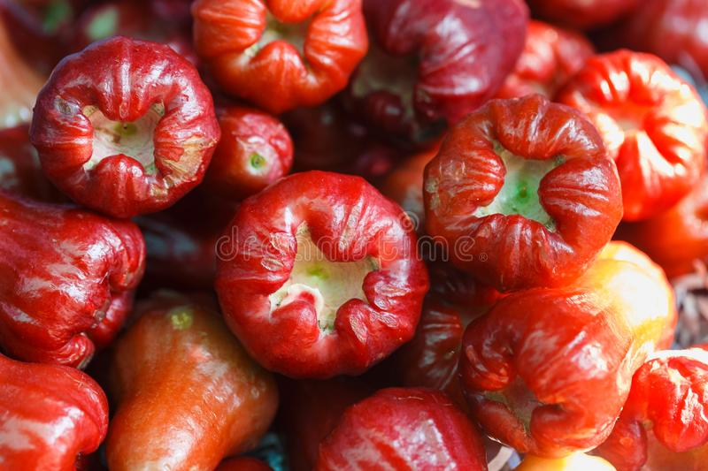 Ava apple Rose appleasia fruit at local market Low calorie for health concepts. stock photo