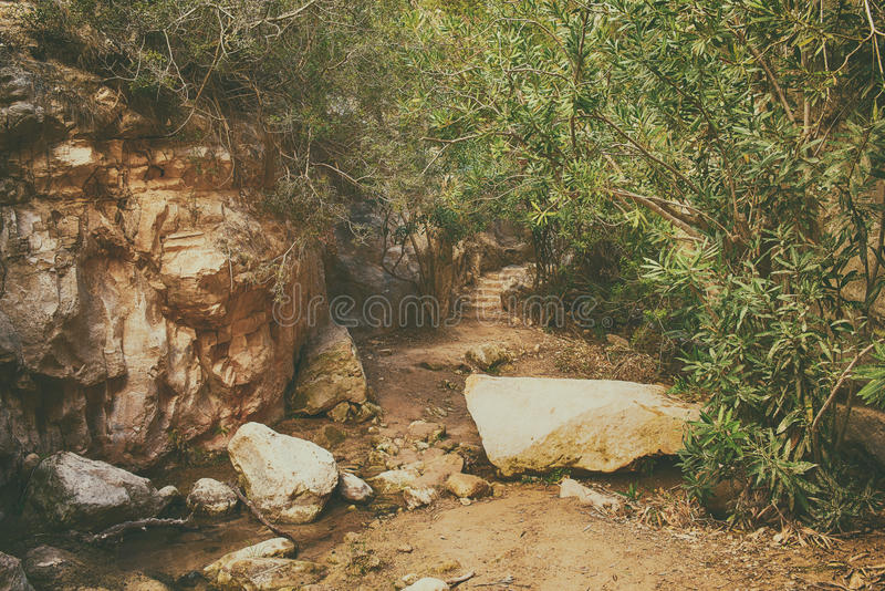 Download The Avakas Canyon Stock Photo - Image: 83705629