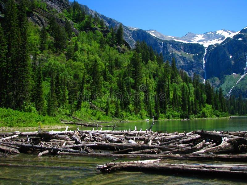 Avalancha del río fotografía de archivo