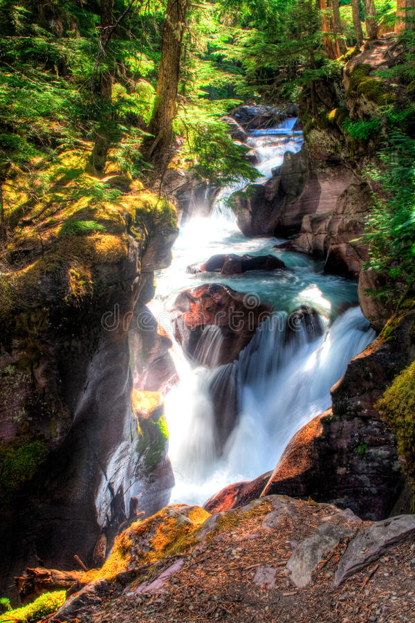 Download Avalanche Creek Falls stock image. Image of summer, adventure - 13454271