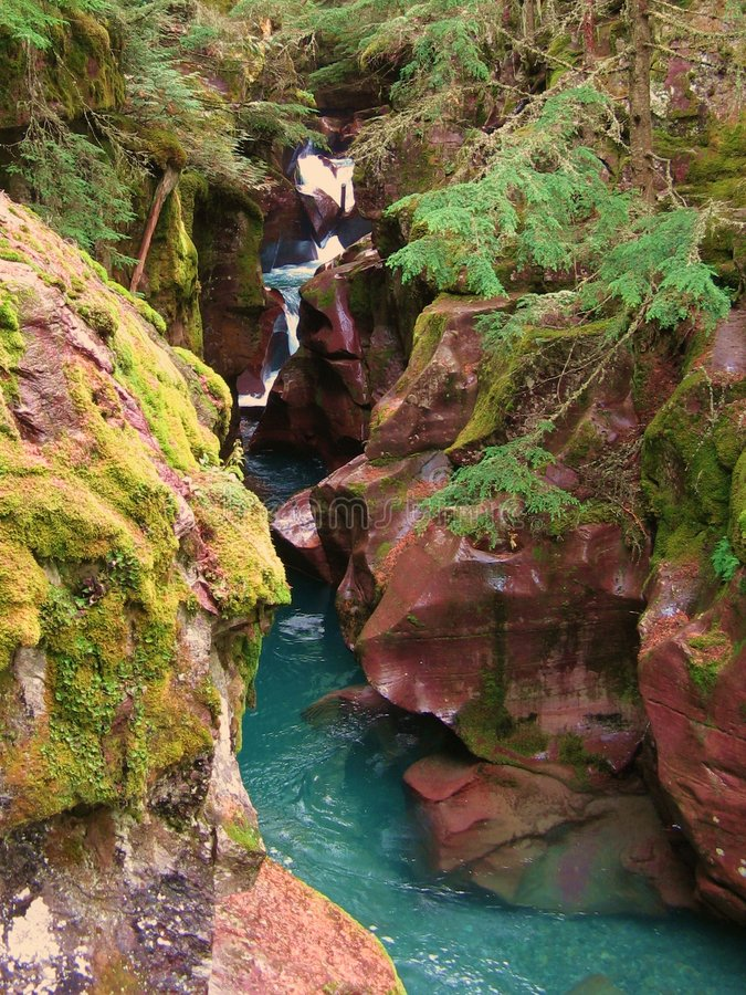 Download Avalanche Gorge stock image. Image of forest, water, montana - 7270299