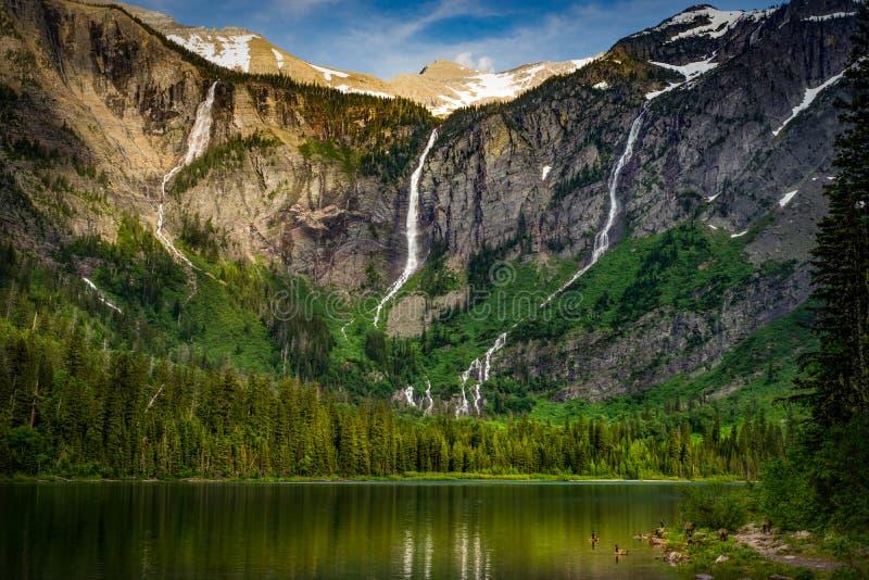 Avalanche Lake, Glacier National Park, Montana royalty free stock photos