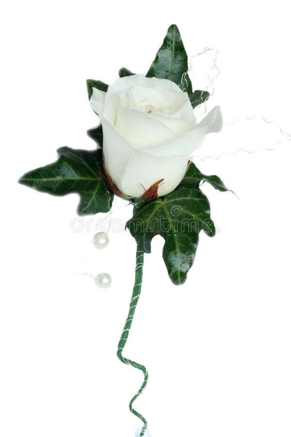 Download Avalanche Rose And Ivy Wedding Button Stock Photo - Image: 9566984