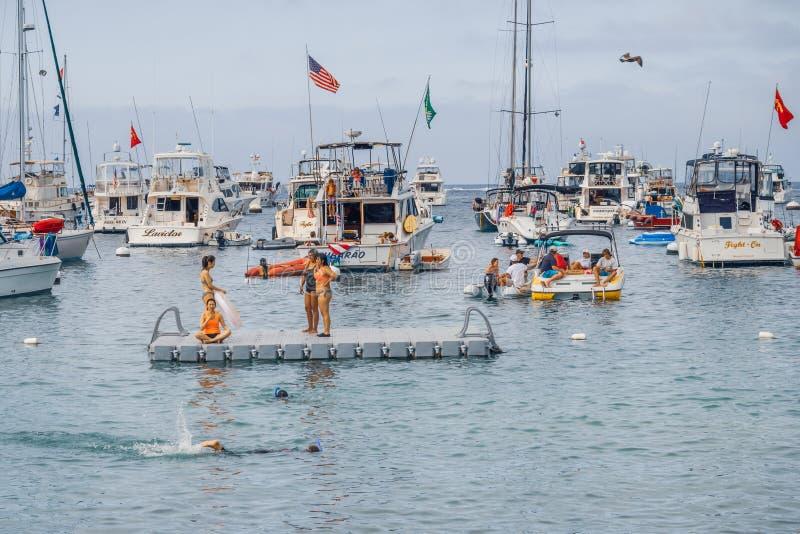 Avalon Harbor, Catalina Island, CA stockbilder