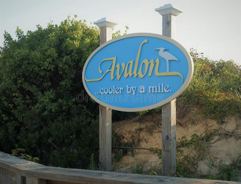 Avalon som är ny - ärmlös tröjatecken arkivbilder