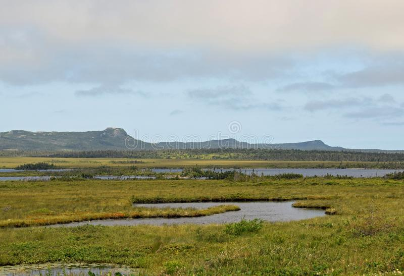 Avalon Wilderness reserve landscape. Seen from the Irish Loop, Avalon Peninsula, Newfoundland royalty free stock images