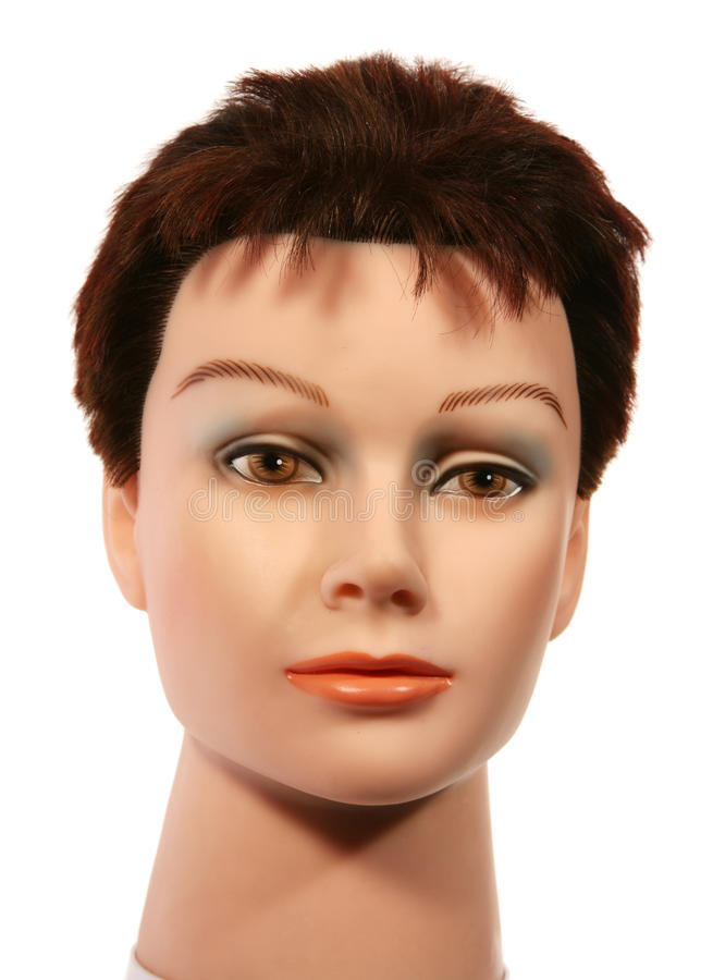 Avant femelle principal de Sally de mannequin photos libres de droits