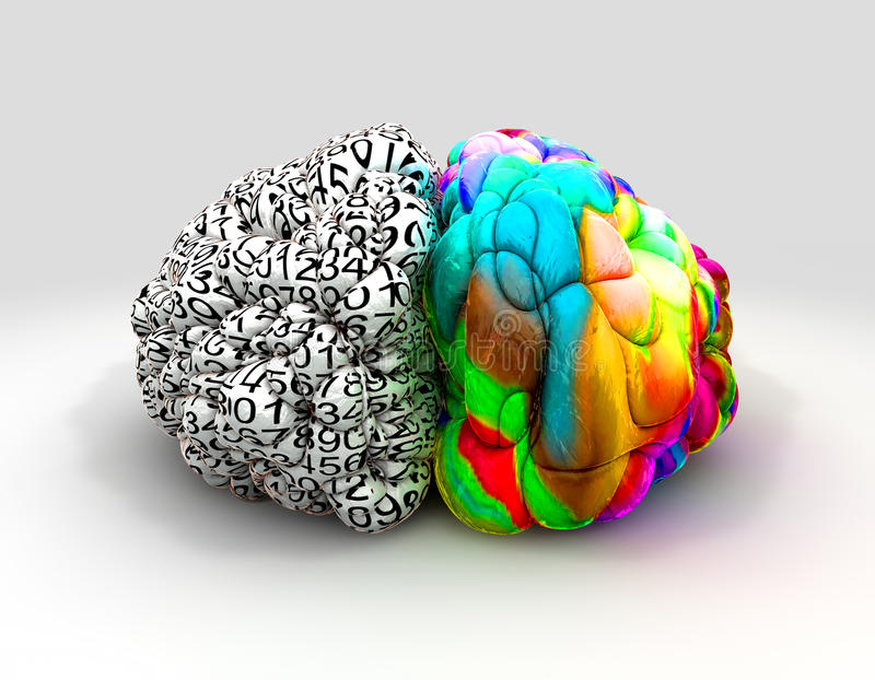 Avant gauche et droit de concept de cerveau illustration stock