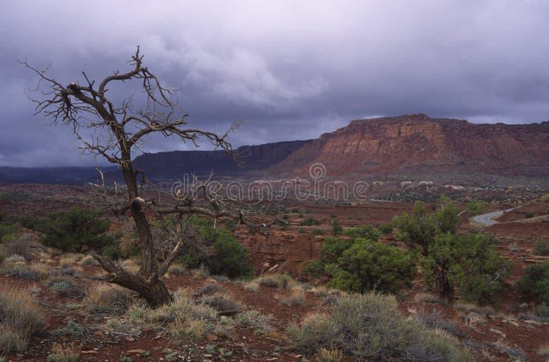 Avant une tempête de pluie dans le désert de l'Utah photo stock