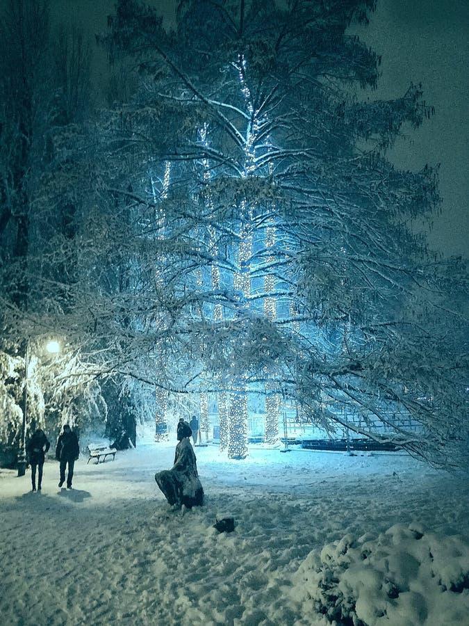 Avatar de la neige sur la planète photos stock