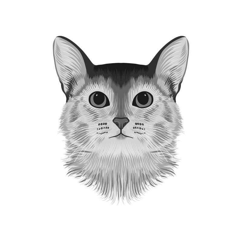 Avatar principal del gato abisinio, dibujo de bosquejo blanco y negro, ilustraciones exhaustas de la mano, ejemplo monocromático  libre illustration