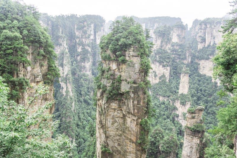 Avatarhallelujaberg royaltyfri foto