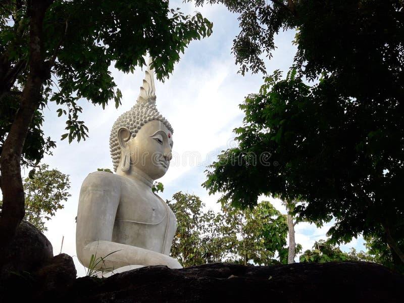 Avbilda av Buddha royaltyfri bild