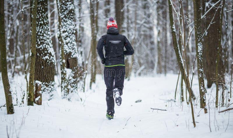 Avbilda från baksida av den rinnande idrottsman nen bland träd i vinterskog royaltyfri foto