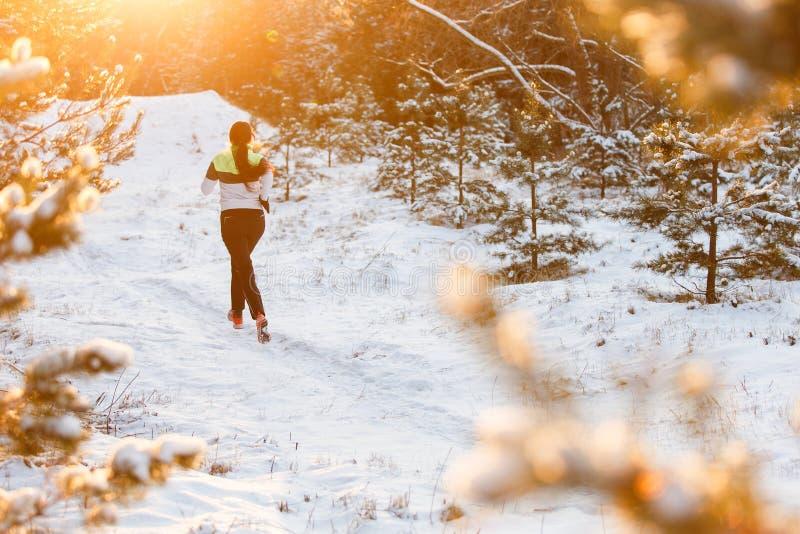 Avbilda från baksida av idrottskvinnaspring till och med vinterskog royaltyfri bild
