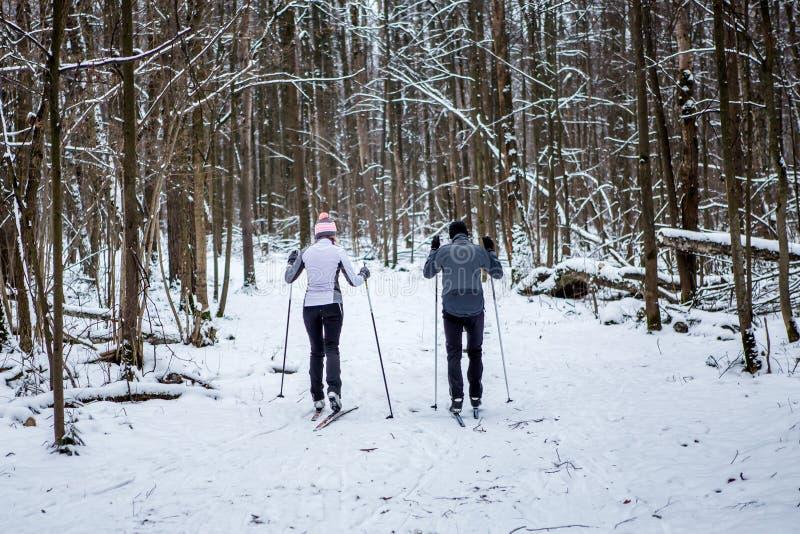 Avbilda från baksida av sportar kvinna och manskidåkning i vinterskog arkivfoton
