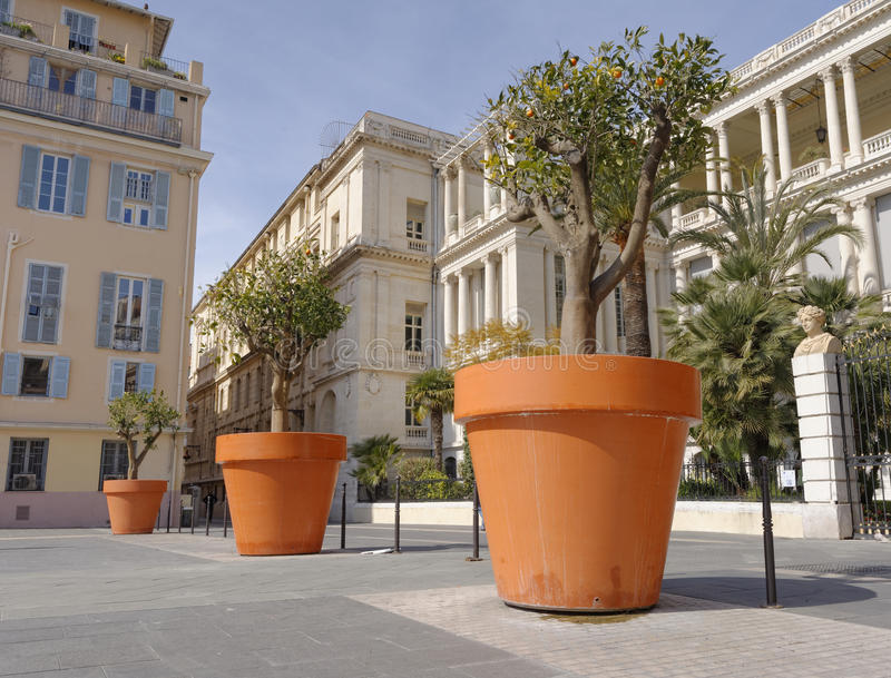 Blommakrukar i Nice arkivfoton