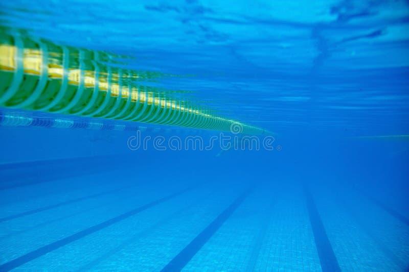 Avdelare av banor i den stora simbassängen royaltyfria foton