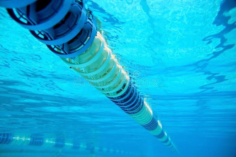 Avdelare av banor i den stora simbassängen royaltyfria bilder