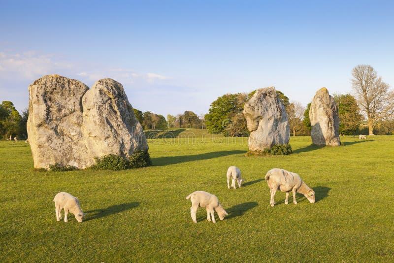 Avebury kamienia okrąg Anglia UK zdjęcia stock