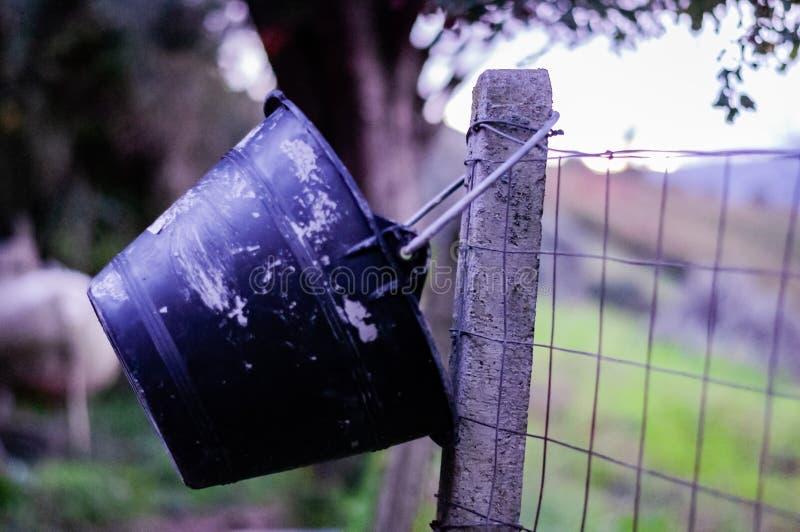 Avec les déchets photographie stock libre de droits