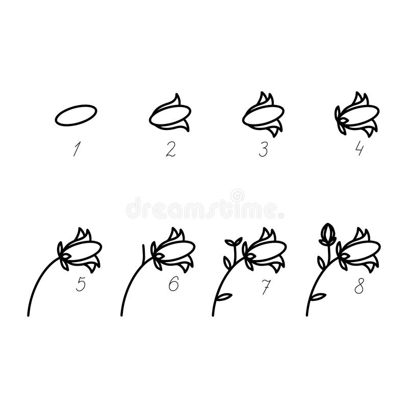 AVector como à campainha de tiragem Ilustração tutorial passo a passo da flor da campânula Estilo da mola no fundo branco ilustração do vetor