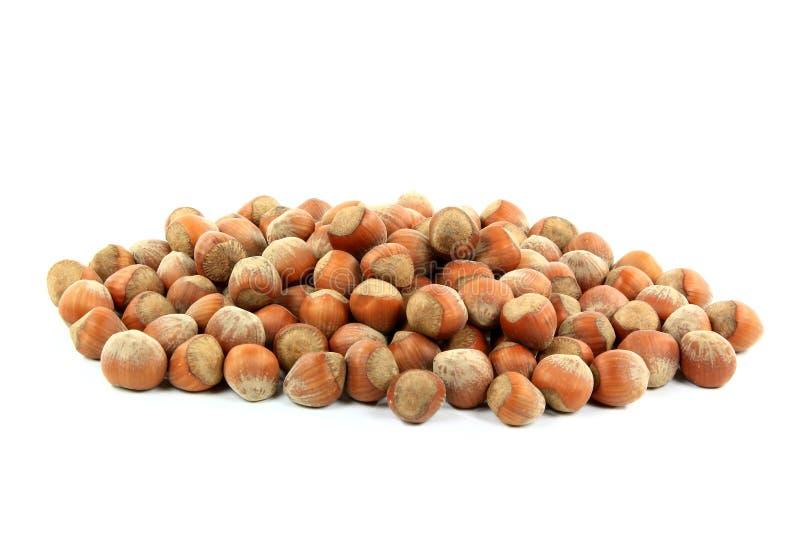 Avelã Unshelled da pilha Nuts. fotografia de stock royalty free